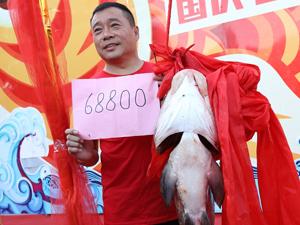 36斤鱼拍68800 游客们现场沾喜气争相与它合影