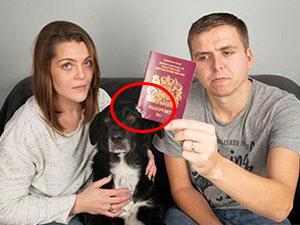 护照被狗咬遭遣返怎么回事 新婚夫妻蜜月被