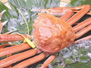 一只螃蟹12万怎么回事 一只螃蟹卖12万天价