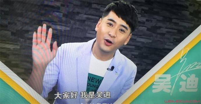 影视演员吴迪资料