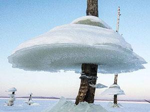 水库现冰蘑菇怎么回事 冰蘑菇长什么样子的能吃吗