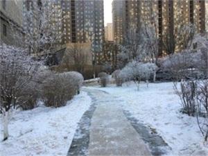 山西小区人工造雪怎么回事 人工造雪原因曝