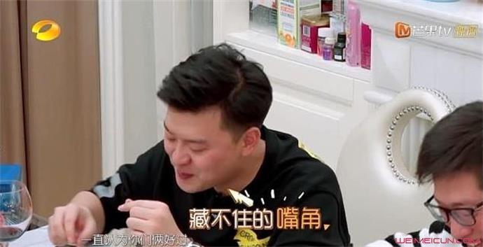 张戈追求过袁姗姗