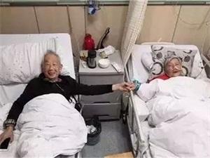 耄耋夫妇病房牵手怎么回事 恩爱几十年病房牵手令人动容