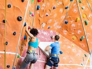 健身学攀岩竟为偷怎么回事 画面曝光一身好本领竟一路走歪