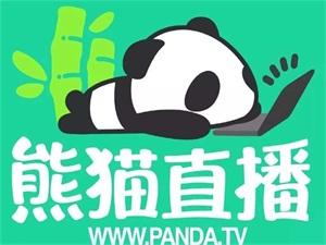 熊猫直播被曝破产 熊猫直播为什么凉了卖给谁了