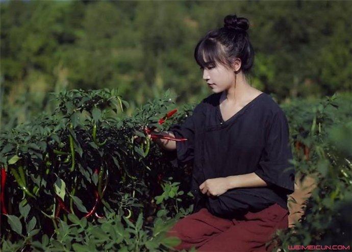 李子柒个人资料