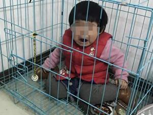 将女童关笼中摆拍 来龙去脉揭露真相令人万万没想到
