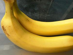 男子用香蕉抢银行怎么回事 经过和男子真正