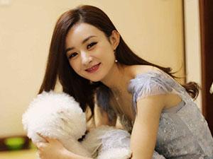 赵丽颖宣传丈夫新作 冯绍峰四字回复又低调撒了把狗粮