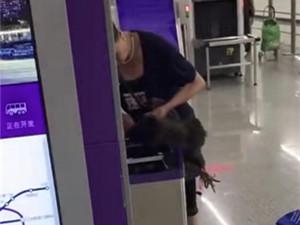 硬核大妈地铁杀鸡怎么回事 时长仅27秒视频在网上引热议