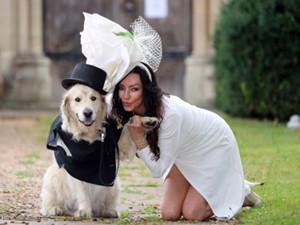 女模嫁给6岁爱犬 离奇婚事详情曝光后续令人