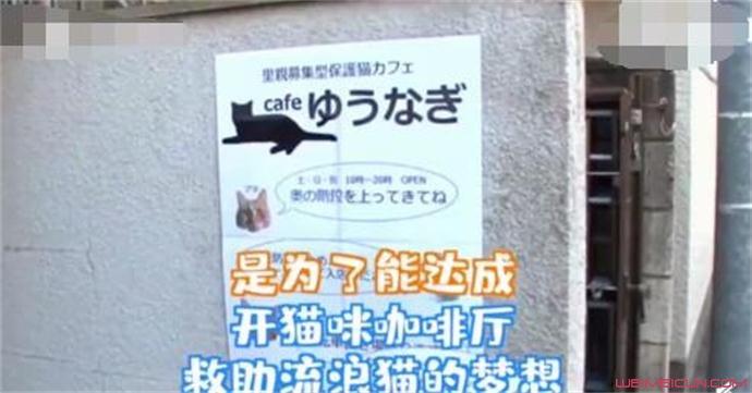 日本最省女孩的梦想