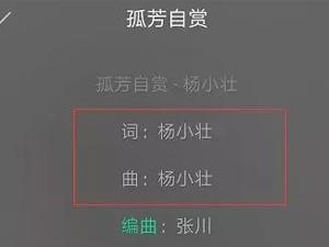 杨小壮孤芳自赏抄袭谁的 歌曲已下架抄袭事件详情引热议