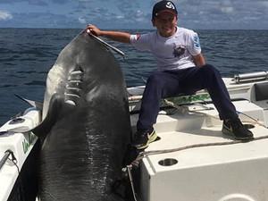 男童捕628斤巨鲨 曝现场画面令人惊叹他是怎么做到的
