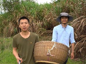 华农兄弟是哪里的 刘苏良和胡跃清是不是已经结婚了