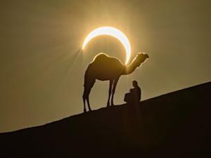 骆驼背上的太阳好美 自然与人文的完美结合摄影师是他
