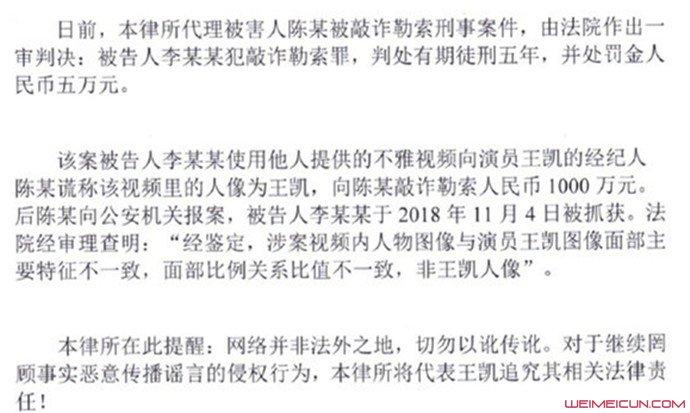 王凯假视频案胜诉