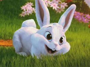 兔子为什么喜欢被摸头?