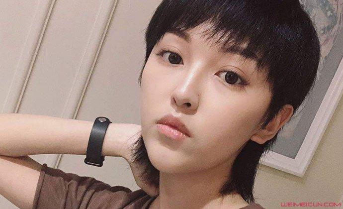 张凯毅怎么在网上消失了