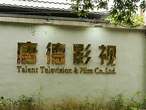 唐德影视列为被执行人 范冰冰曾是该影视的股东之一