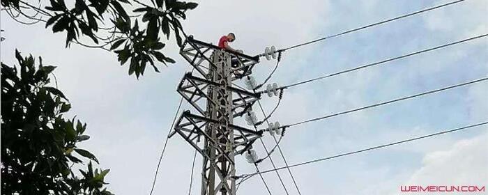 为什么维修高压电线不会被电