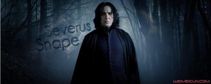 斯内普为什么讨厌哈利波特