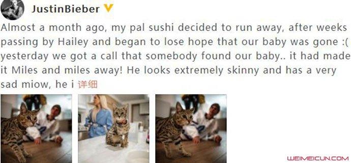 比伯寻回天价猫