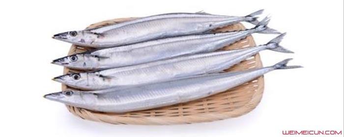 为什么刀鱼很贵