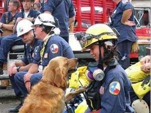 911救援人员为什么会患癌?