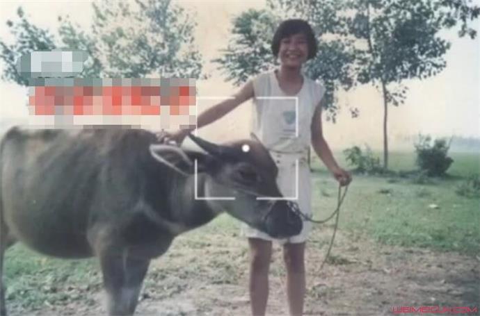 贾玲年少时放牛照