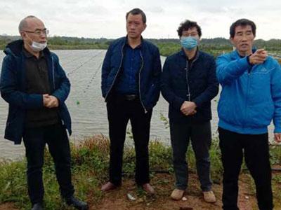江西万年淡水珍珠夏清华养殖基地迎来南昌大学洪一江教授参观指导