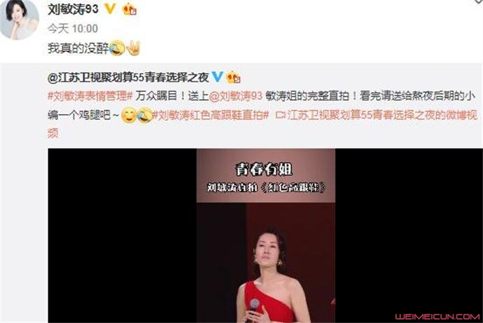 刘敏涛回应表情失控:我真的没醉