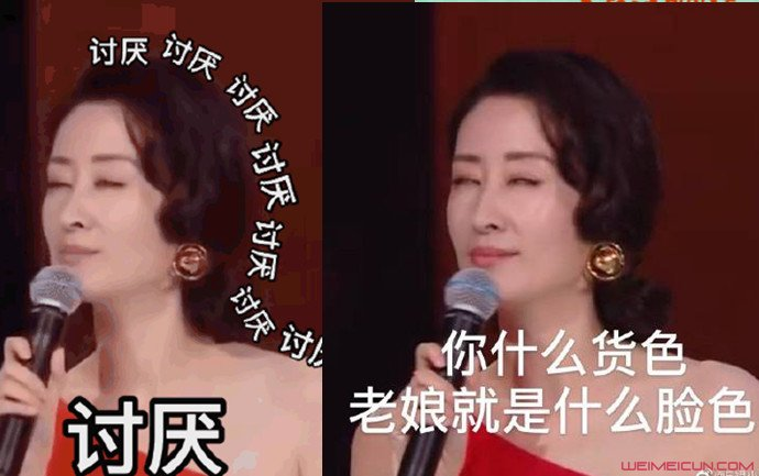 江苏卫视晚会观众都是假人