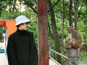 刘昊然和猴子对视 一波网友看图配字的神操