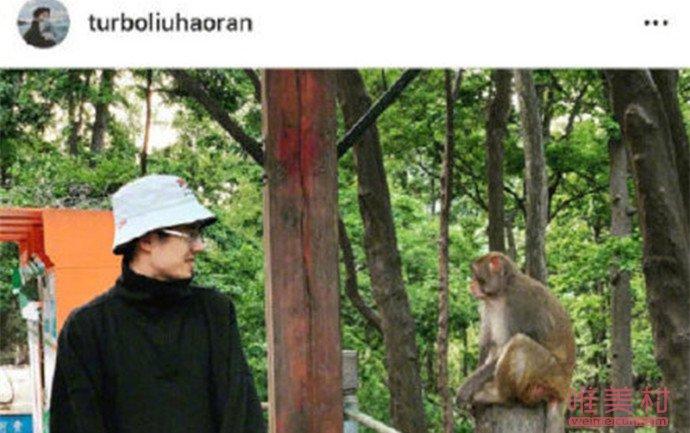 刘昊然和猴子对视