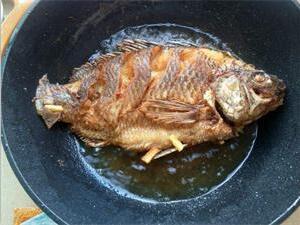 油鱼为什么叫基佬鱼