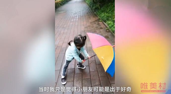 4岁萌娃雨天为蜗牛撑伞