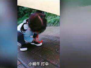 4岁萌娃雨天为蜗牛撑伞 小女孩萌翻众人评论区太搞笑了