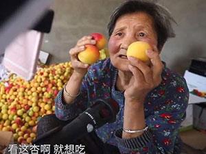 80岁奶奶直播带货一周卖杏40箱 详情画面曝