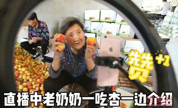 80岁奶奶直播卖杏画面