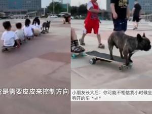 斗牛犬踩滑板带小朋友遛弯 身后带一串小朋友太拉风了