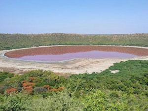 印度一湖泊变粉红色 罕见奇观专家解释或有这两种原因