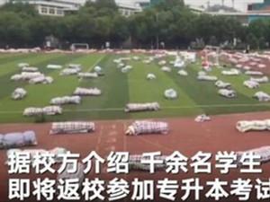 高校晒近2000套被褥迎接学生返校 画面壮观心意让人感动
