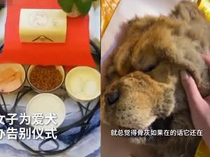女子花2千为去世爱犬办告别仪式 一览详情被触动到了
