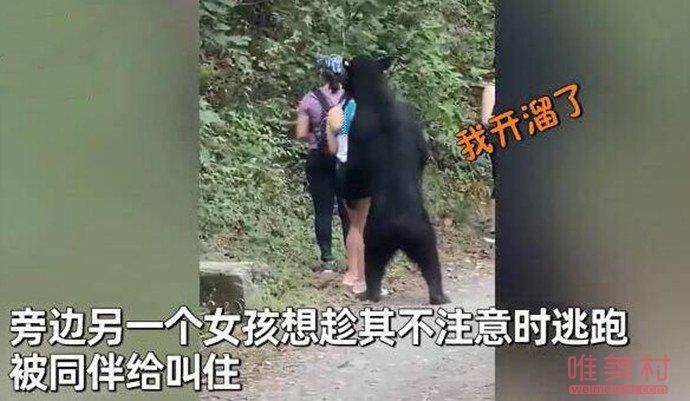 女子路遇黑熊