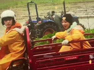 向往的生活路透张艺兴开拖拉机带杨紫 二人