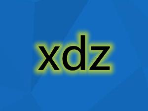 网络用语xdz是什么意
