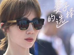 孙莉时隔12年复出 搭档袁文康王真儿出演妻