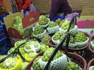 大陆暂停两种台湾水果输入 台湾人的反应令人气愤